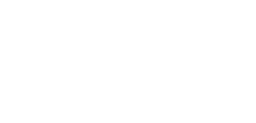 Group Ginger